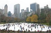 The Wollman Ice Skating Rink in winter